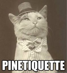 Pinterest Etiquette by @writeontrack_l