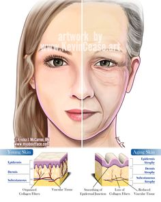 Aging skin comparison on Behance