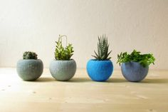 Felt succulent planter / felted bowl / Succulent pod / Blue felt vases / winter decor on Etsy