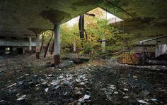Detroit Disassembled | detroit disassembled