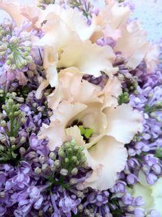 Kleuren & Bloemen, bloemen en nog eens bloemen. door DON FLORITO