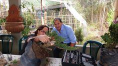 Vivero Crisalide Tel= 8650157 Contact= agrosaucio_ltda@h... instagram= @viverocrisalidebogota Youtube channel= https\://www.youtube.com/channel/UCm0zKcjfIW5v7gBDKrehY7A  twitter @viverocrisalide facebook= vivero crisalide