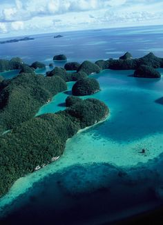 The Rock Islands of Palau  visited Palau to take part of in a beautiful wedding on a yacht...the Rock islands are a sight to behold