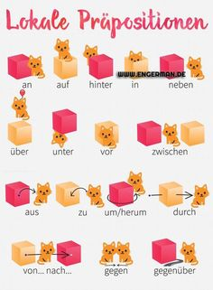 I got this nice pics from my tandem partner. She's kind of obsessed with her cats and she found some cute german resources to better understand locative prepositions. Study German, German English, Learn German, Learn French, German Grammar, German Words, Dativ Deutsch, German Resources, Deutsch Language