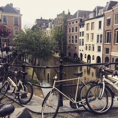 One of the many beautiful canals of the city of Utrecht, with, of course, a lot of bikes 🚲🏞🇳🇱