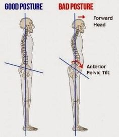 The 10 Graphs are essential for those who want to improve the poor postures quicky!