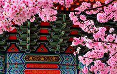 Best Tainan Taiwan 旅行 640 x 480