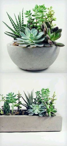 DIY planter More