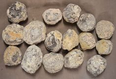 Mexican Tranca Geodes 5 Pounds 16 Pieces Some will Fluoresce Chihuahua