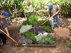 The gardening experts at DIYNetwork.com show you how to build an herbal knot garden, which will add beauty to your yard and wonderful tastes and smells to your meals.