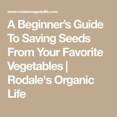 A Beginner's Guide To Saving Seeds From Your Favorite Vegetables | Rodale's Organic Life