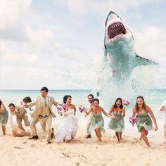 Dit soort #trouwfotos vind ik zo grappig!  Fantastisch hoe iedereen meedoet  #trouwen #bruid #vrienden