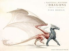 """Artist Todd Lockwood has created a gorgeous anatomical study of a dragon for the cover of the upcoming book The Natural History of Dragons: A Memoir by Lady Trent, transcribed by Marie Brennan and itself a Victorian-era exploration of the evolution of dragons...""  (Link has free wall papers too.)"