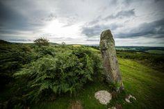 Returned from Dartmoor http://jensketch.com/photo-blog/2015/9/6/returned-from-dartmoor