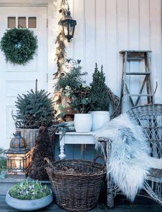 Ryk naturen indenfor og skab en smuk jul med masser af blomster og grønt. Holder du dig til hvide blomster, er der plads til at gå lidt mere amok i antal og styling og stadig få et smukt, stilet og ikke mindst julet udtryk.
