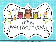 Owl Themed Whole Classroom Rules freebie