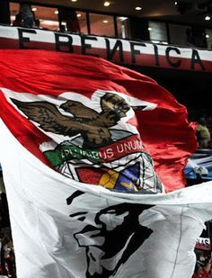 Benfica Wallpaper, Bean Bag Chair, Furniture, Fans, Football, Wallpapers, Home Decor, Happy, Stadium Of Light