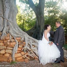 #bride #wedding #instabride #instawedding #instalike #instalove #instabeauty #tree #groom http://gelinshop.com/ipost/1524720346685625692/?code=BUo5RO2AdVc