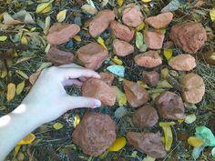 Després les vaig col·locar al jardí tal i com tenía pensat, rodejant la pedra blanca.