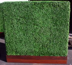 8ft tall Hedge Panel in an IPE wood base.