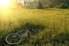 Cycling routes and trails in Finland - How to Scandinavia Cannondale Mountain Bikes, Hardtail Mountain Bike, Mountain Bicycle, Mtb Bike, Mountain Biking, Road Bike Brands, Dirt Bike Racing, Scooter Bike, Best Mountain Bikes