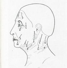 Une petite ridectomie ? Le lifting version 1933