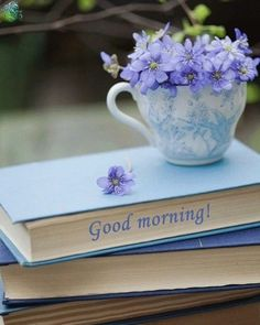 Good Morning Enjoy A Purple Kinda Day Friends..!