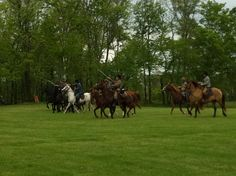 4th Virginia Cavalry (Black Horse) at Brentsville, Virginia