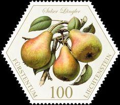 """Pears: """"Sulser Längler"""""""