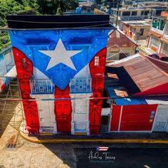 Puerto Rico, Puerto Rican Flag, Photography, Instagram, Art, New York City, Islands, Historia, Art Background