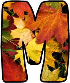The Last Leaf, Old Country Churches, Class Decoration, Tropical Party, Alphabet And Numbers, Autumn Activities, Autumn Theme, Autumn Leaves, Hand Lettering