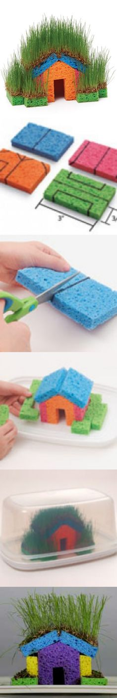 DIY Mini Grass Houses with Sponge for Kids. If you're looking for a fun project to do with the kids, Mini Grass Houses with Sponge is a great project. It's the perfect experiment the whole family will love!