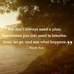 "Inspirational quote of the day: ""You don't always need a plan. Sometimes you just need to breathe, trust, let go, and see what happens."" -Mandy Hale"