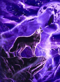 Purple howl double