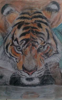 Pastell-tiger