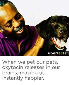Psychology fact | überfacts