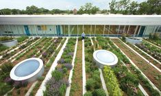 Rooftop Haven for Urban Agriculture