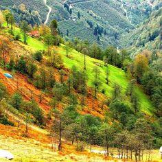 #Trabzon'da güzelim sonbahar #Trabzon yaylaları #yeşil hep yeşil #Karadeniz #Türkiye ♥♥♥ #beautiful autumn in my country #Trabzon highlands #Trabzon #autumn #green is always green #Black Sea #Turkey #photo: #Cengiz Aktaş ♥♥♥