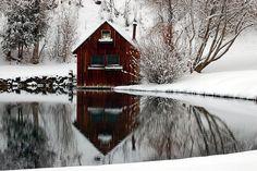 winter solitude..