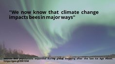 cool #quote Bee populations expanded during global warming after the last Ice Age #bees