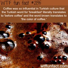 Coffee and Turkish Culture  - WTF fun facts