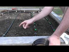 Installing a Drip Irrigation System for Raised Beds - YouTube