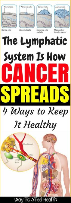 The Lymphatic System Is How Cancer Spreads: 4 Ways to Keep It Healthy - Way to Steel Health
