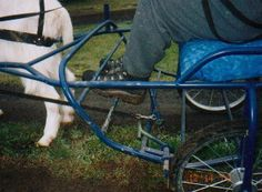 instructions on how to make a goat cart from The Shore Goat Cart