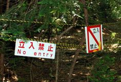 "Aokigahara Forest, Japan ""THE MOST HAUNTED FOREST AND HOT SPOT IN ..."