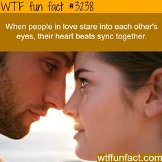 When couples stare into each other - WTF fun facts