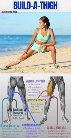 Inner Thigh Workout That Will Transform Your Legs Into Slender Pins - Free Gym & Fitness Workouts Building Leg Muscle, Muscle Building Workouts, Build Muscle, Body Weight Leg Workout, Leg Workout At Home, Boxing Workout, Workout Plans, Quad Muscles, Thigh Muscles