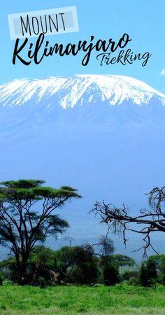 8 Reasons Why Mount Kilimanjaro Trekking Should Be On Your Bucket List - Tanzania Adventure - Bucket list - Travel Tanzania