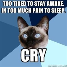 Chronic Illness Cat - Too tired to stay awake. In too much pain to sleep. Cry