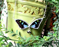 Real Butterfly Wing Jewelry Purple Spotted by DebrasDivineDesigns